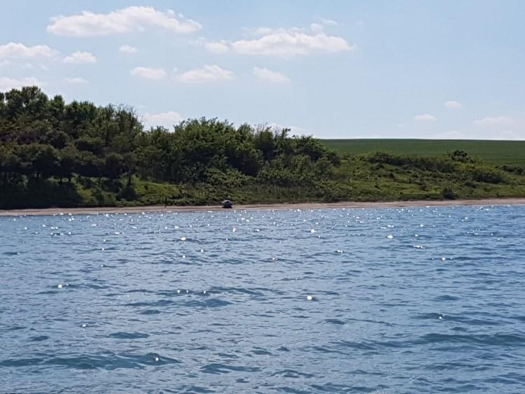 Див плаж до Крайморие