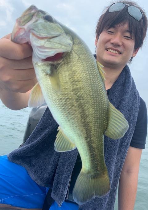 8月19日琵琶湖ガイドはボイル撃ち!ジャスターフィッシュ3.5DSとシマノジジルとジャッカルスパイテールでビッグが混じらず(;^_^A
