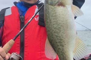 1日遅れ更新10月14日琵琶湖ガイドは冷たい雨に大苦戦!ジャスターフィッシュ3.5DSで小2のお子様に釣ってもらうのに必死でした。