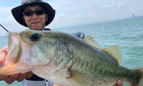 6月16日琵琶湖ガイドは初琵琶湖のゲスト様お二人に釣らせて!の御依頼でGETNETジャスターフィッシュ3.5DSで53・51他でお二人にも初琵琶湖バス!