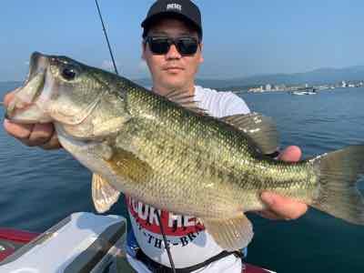 7月31日琵琶湖ガイドは釣れたらデカイ!GETNETジャスターフィッシュ3.5レジットデザインワイルドサイドST65Lでミドスト!