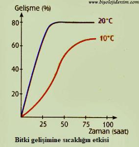 bitki büyümesi sıcaklık ilişkisi