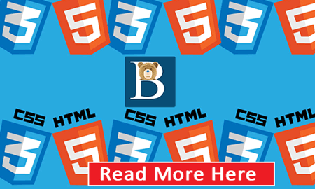 Master HTML and CSS - By Bizanosa on Udemy