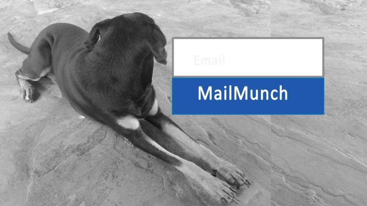 mailmunch tutorial course for beginners