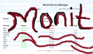 Monit configs for VestaCP Centos7
