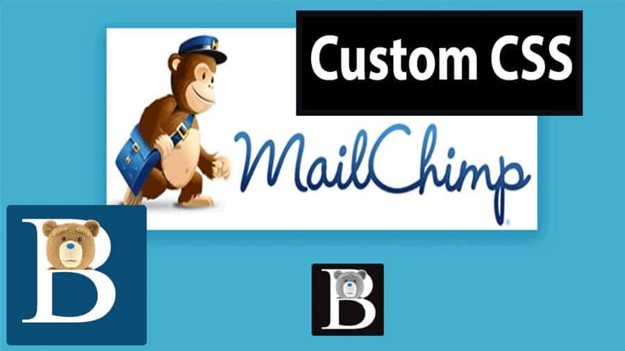 Add Custom CSS on Mailchimp Signup Form