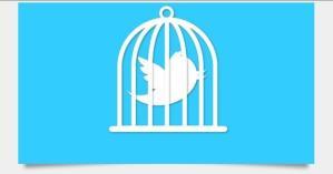 BIZBoost Twitter Jail