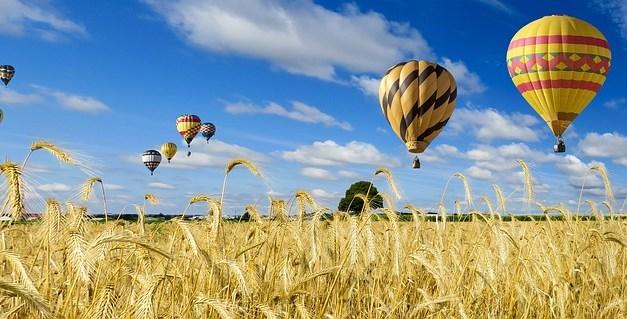 Management / HR: Avoid Typical Summertime Hazards