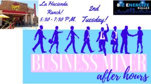 BizEnergize Dallas Business Networking Mixer