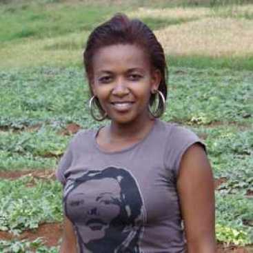 Watermelon farming in Kenya 1