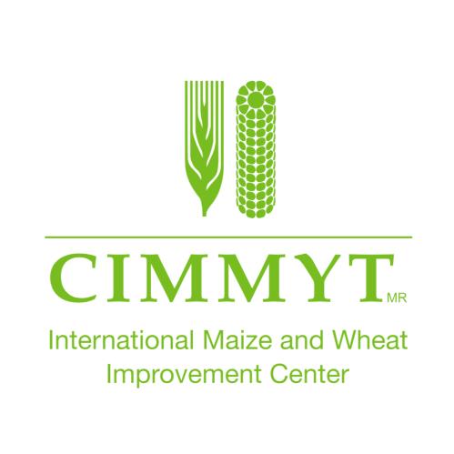 Hope as farmers inch closer to accessing fall armyworm-tolerant maize hybrids - Bizna Kenya