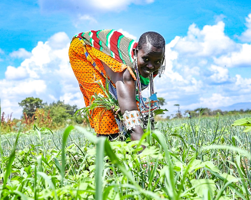 Nareto Youth Group member Semelei Kanai weeds a plot of land with onions during the Safaricom Foundation Wezesha Youth in Agribusiness Launch in Oloitoktok, Kajiado County - Bizna Kenya
