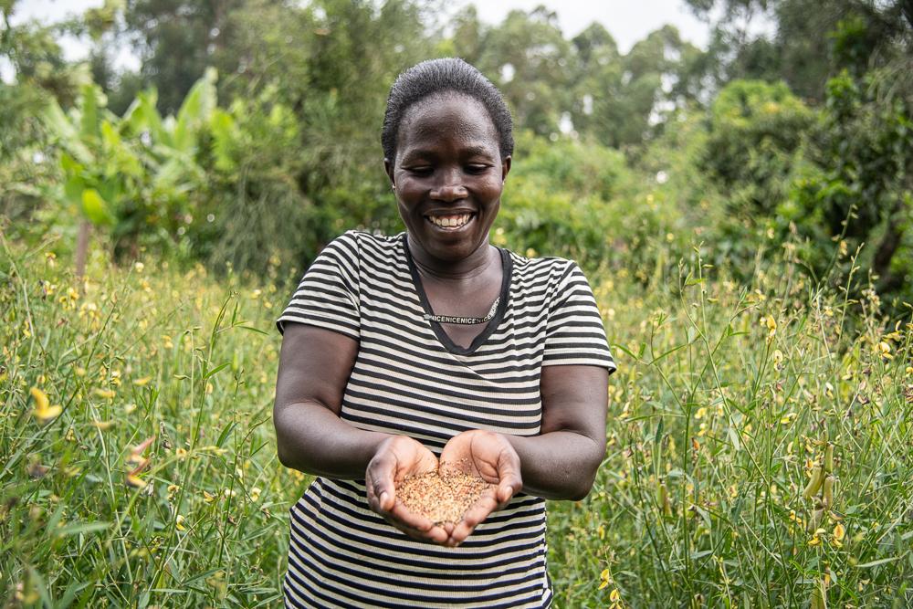 Diverse seeds shown by Pauline Odera, a farmer who also runs the seedbank at Vihiga - Bizna Kenya