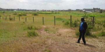 Buying Land for Speculation