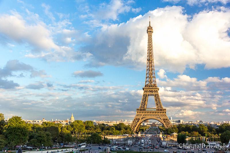 Emilewicz: We Francji wzrasta zapotrzebowanie na polskie produkty