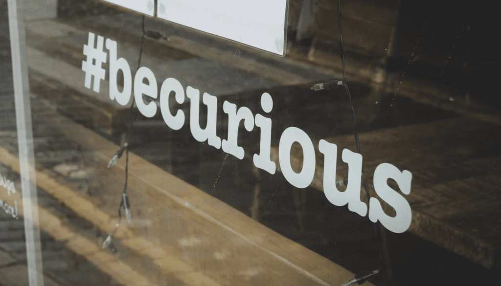 be curious window