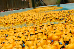 River Parish Disposal Sponsored Rubber Duck Derby