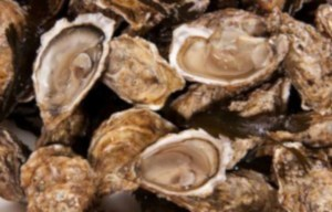 St. Clement Oyster Fest