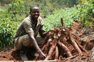 Nigeria's Agribusiness