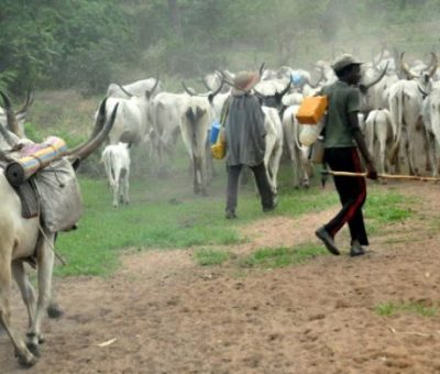 Insecurity: There'll Be Food Crisis In Nigeria This Year