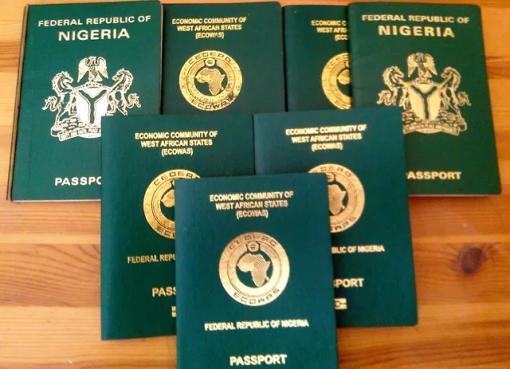 Immigration Service Reopens Passport Application Portal