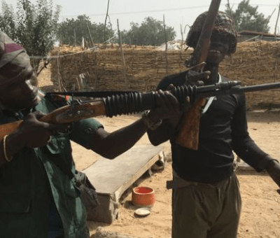 Boko Haram: 43 Rice Farmers Killed In Borno