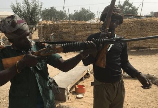 Boko Haram: 43 Rice Farmers Killed In Borno