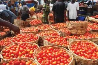 Price of Tomato