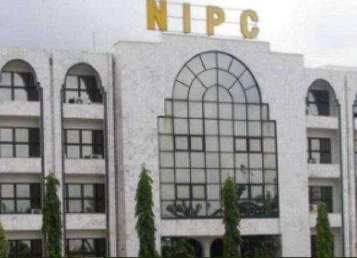 NIPC To Unveil Single Window Investors Portal In Q1, 2021