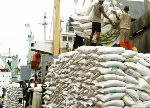 Rice Importation