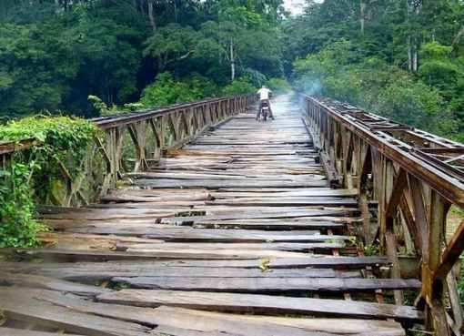 Ogun Orders Demolition Of N20m Illegal Bridge In Forest Reserve