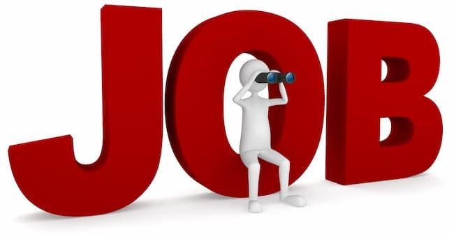 Yobe State Teachers Recruitment Portal For 2021