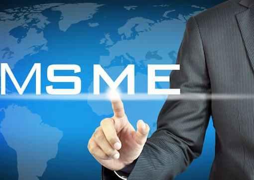 FG Should Consider Adoption Of SME Accelerator Programmes - NEPZA