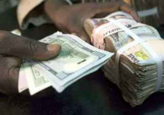 Financial Experts Support Naira Exchange Rate Unification