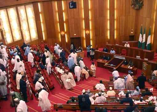 """NARD Strike: NASS Says Demands Of Doctors Are """"Been Processed"""""""