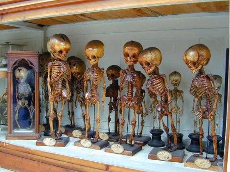 museo firenze3