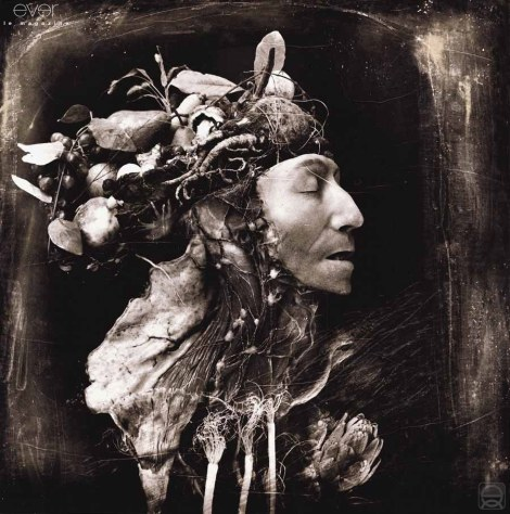 Witkin-harvest-1984