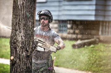 AST Tree Services