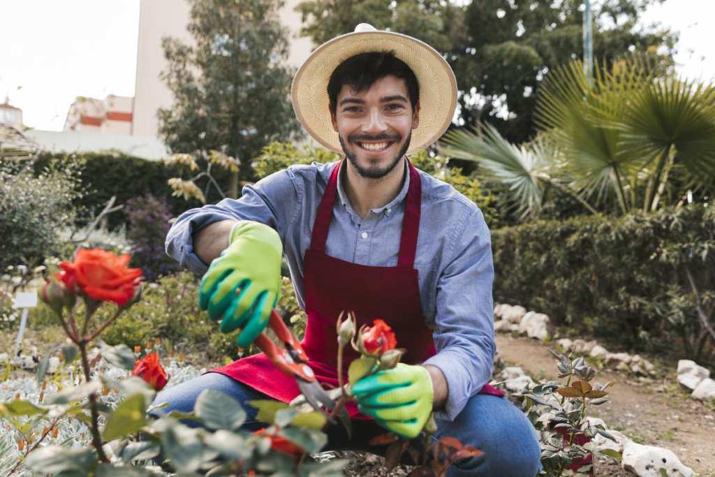 вирощування квітів на продаж