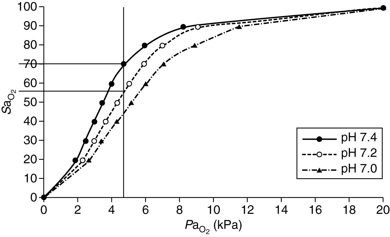 Physiological Effects Of Hyperchloraemia And Acidosis