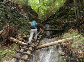 ... ..s preloženými drevenými rebríkmi ...