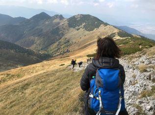 Pohľad dozadu na prejdený hrebeň, najbližšie je Stratenec, Biele Skaly a Suchý.