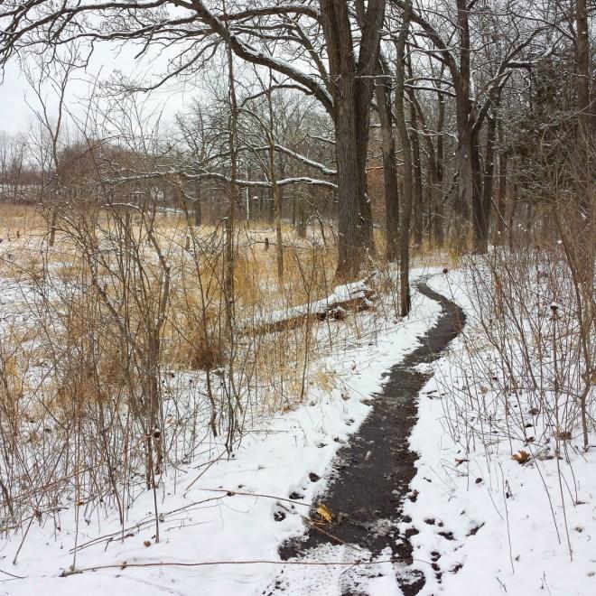 A light snowfall on a Minnesota morning