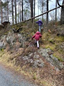 Utforsking av skog.