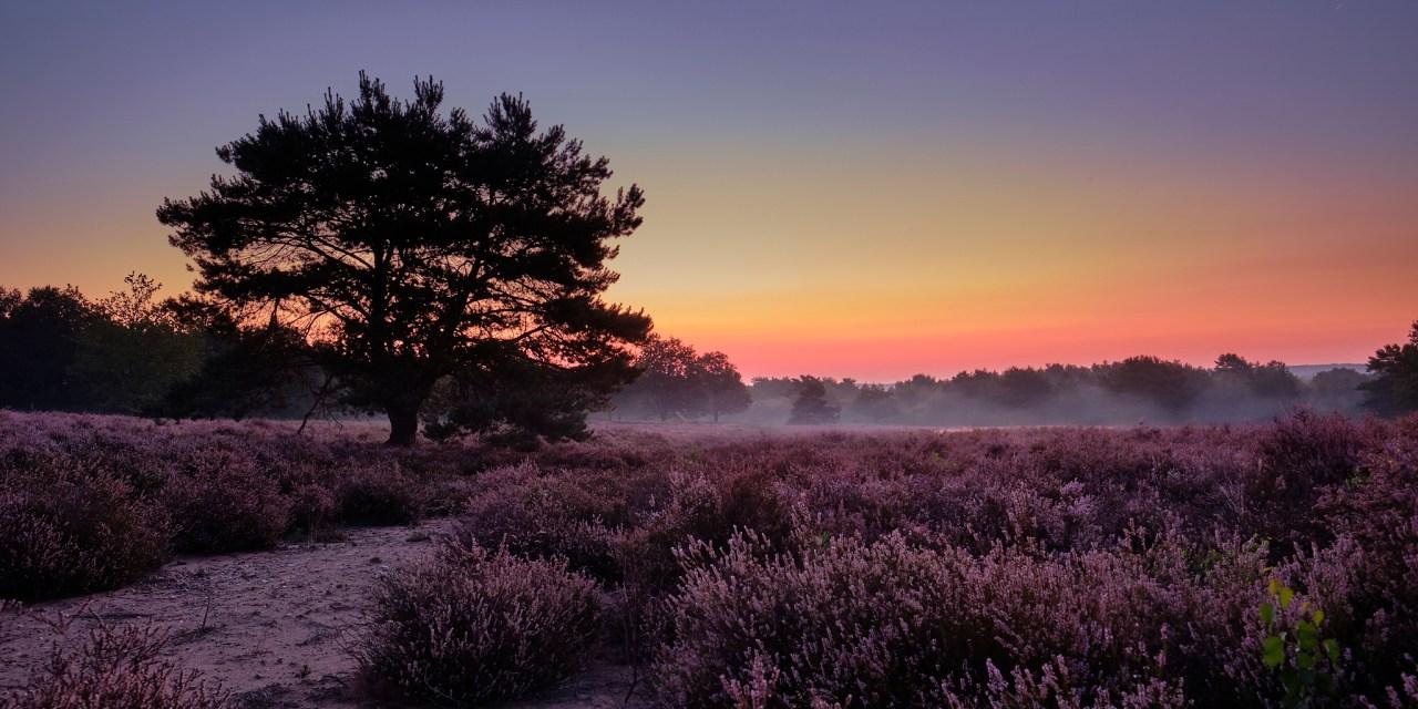 Farbenspiel vor Sonnenaufgang