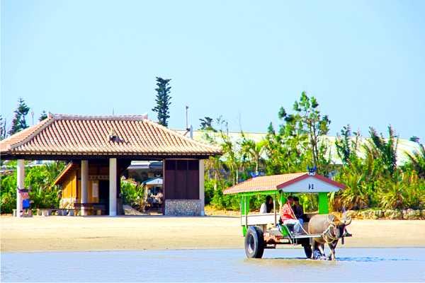 沖縄旅行のベストシーズンは?絶対役立つ7つの考察
