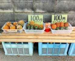 沖縄県名物&グルメ9.無人販売所のスナックパイン