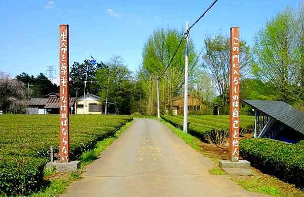 武者小路実篤が築いた村 毛呂山町「新しき村」