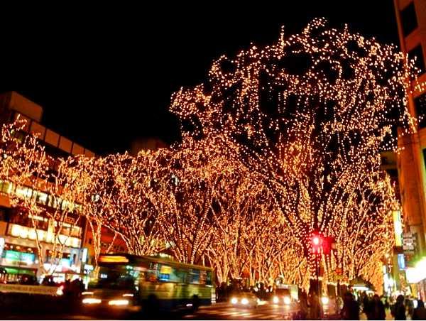 仙台イベント情報③冬の代表イベント!光のページェント(12月上旬~31日)3