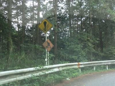 京都の心霊スポット⑨首なしライダーで有名「将軍塚」付近の東山ドライブウェイ 警戒標識